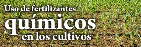 Uso de fertilizantes químicos en los cultivos