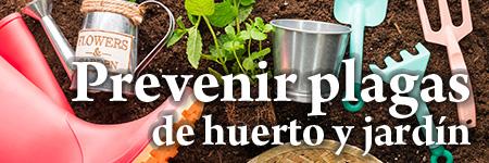 ¿Cómo prevenir las plagas de huerto y jardín?